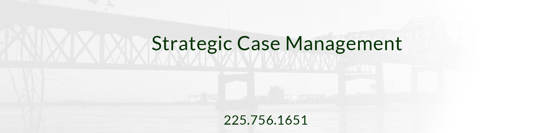 Strategic Case Management - Case Management Companies